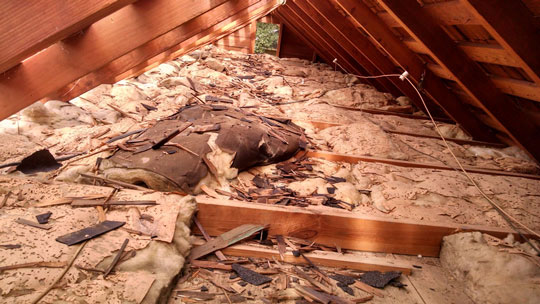 Insulation removal services contractor in chattanooga unsafean attic that teems with old dusty contaminated insulation is not only a potential health threat to the houses residents but it is also unwise solutioingenieria Choice Image